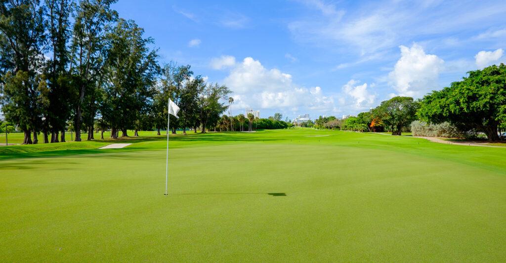 Golf green vista
